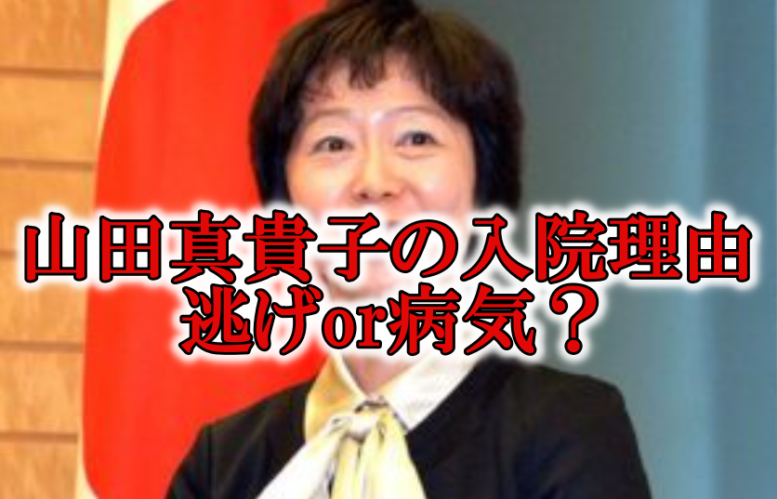 山田真貴子の入院理由と病気