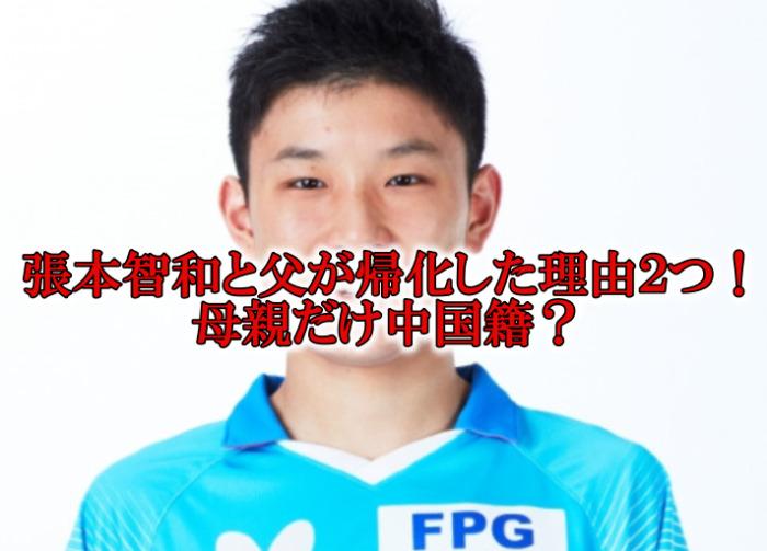 """<span class=""""title"""">張本智和と父が国籍を中国から日本に帰化した理由2つ!母親だけ中国人?</span>"""